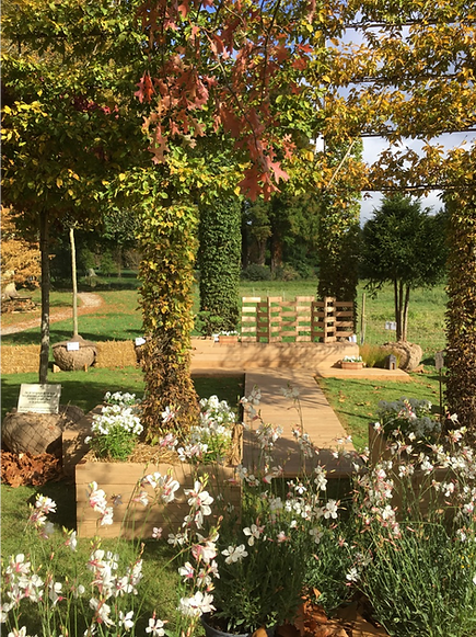 Chene Décor Jardin De Luce design objet
