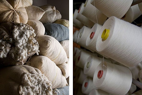 veja-coton-10-9-tt-width-756-height-504-