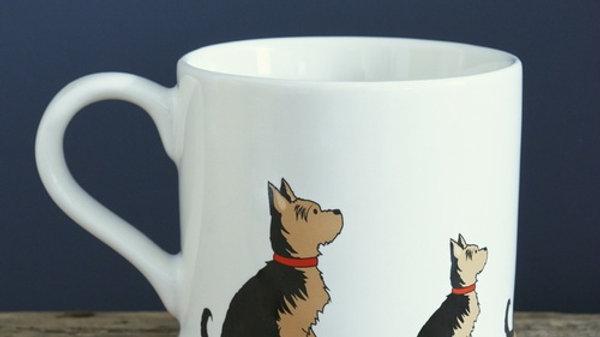 Sweet William Tasse Yorkshire terrier