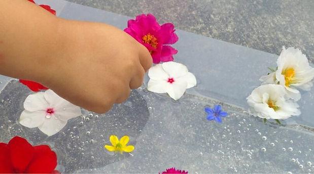 Floating-Flowers-Sensory-Bin-FI-735x408.