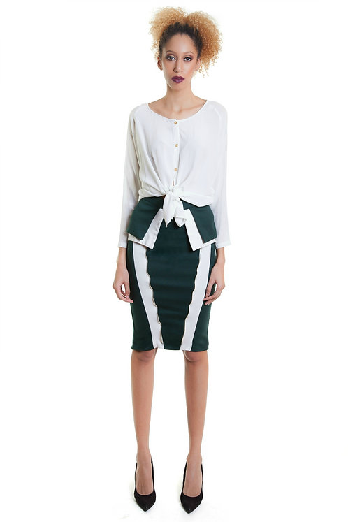 Color Blocked Pencil Skirt
