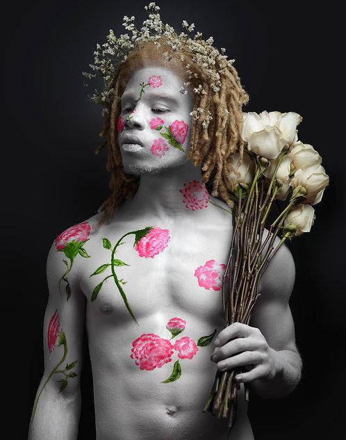 """""""Adam Series"""" (White Roses)"""