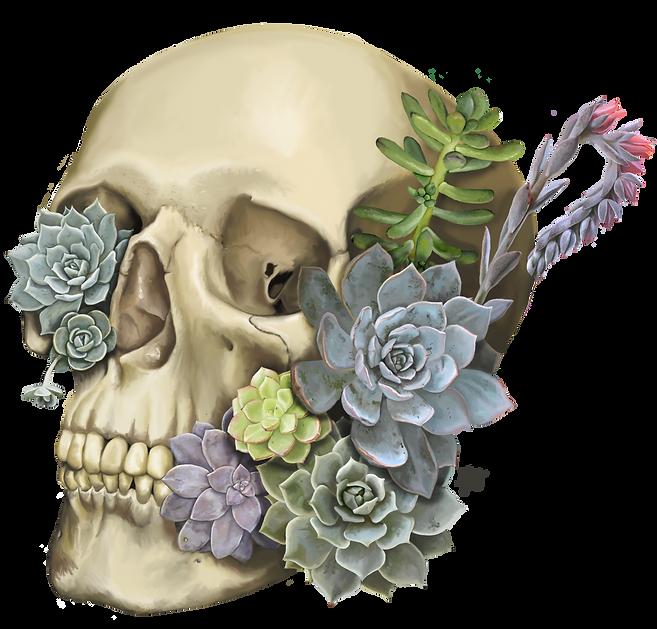 Succulent Skull.png