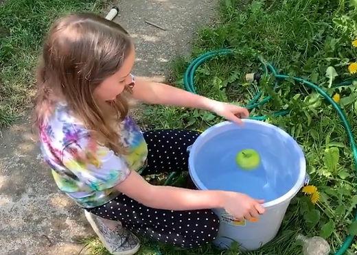 apple bobbing.jpg