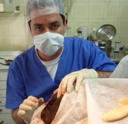Dr. Rafael Hamburger A