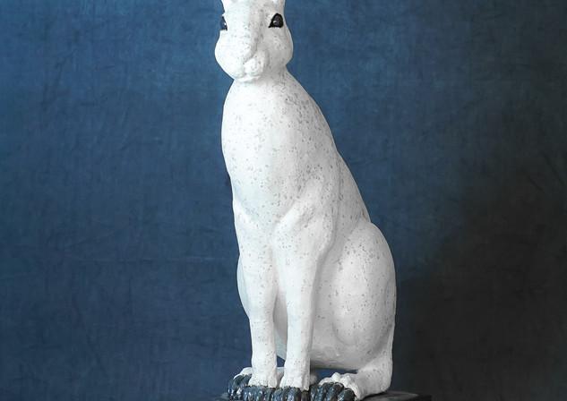 hare-4.JPG