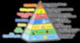 pyramide_alimentation_DG.png