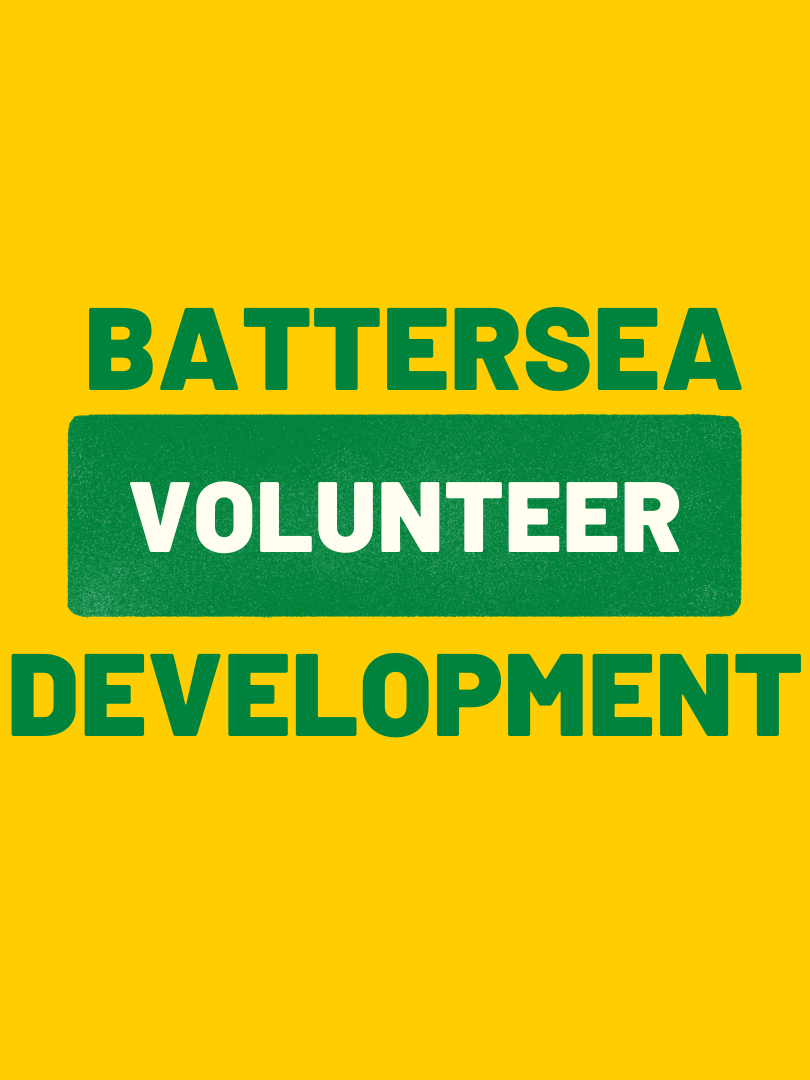 Battersea Youth Voice (2).png