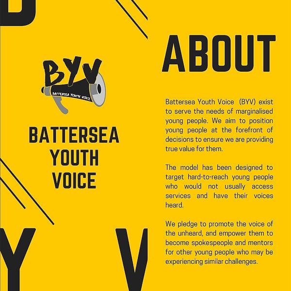 BYV Alliance Website.jpg