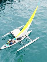 Peddle sail 1.jpg