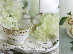 Holunderblüten Inspirationen ... fein verzweigt mit krausen Blütenglocken !