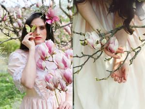 Magnolienblüten - Schwalbenschwanz Photoshooting