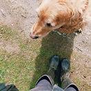 Wellies and Dog