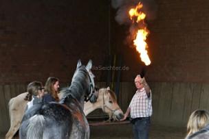 Zirkuskurs mit Peter Deicke