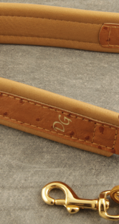 DG Limited Deluxe Bown Ostrich Leather Strap - Gold Hook