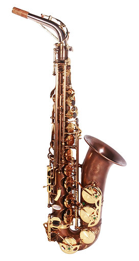 Theo Wanne MANTRA 2 Alto Saxophone (Vintified)