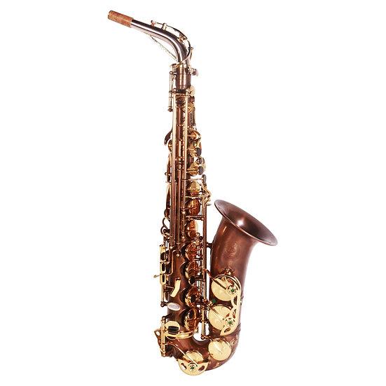 Theo Wanne MANTRA 2 Alto Saxophone (Vintified)