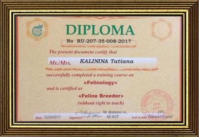 Диплом Калинина Татьяна