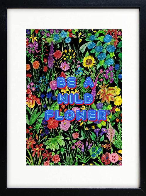 Prairie - Wild Flower