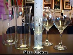 GlassChoices.jpg