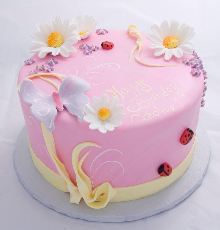 Pink Ladybug St Birthday Cake