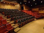 El Teatro Scala, Leonrdo Rodas