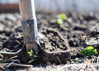 Gartengestaltung_Steiner_Homepage.jpg