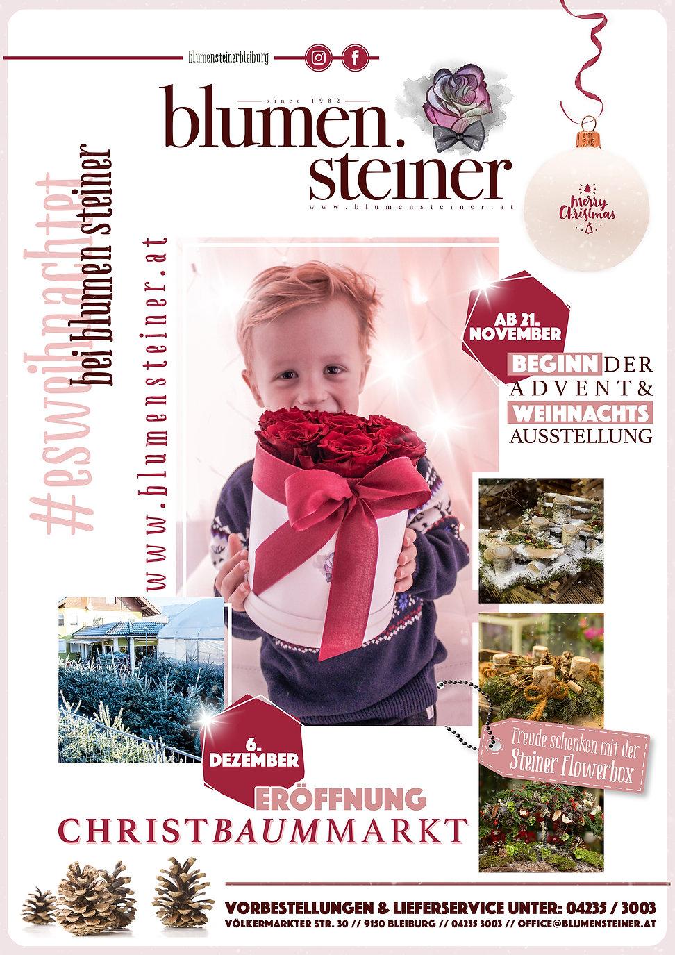 Steiner_Weihnachten_2019_WEB.jpg