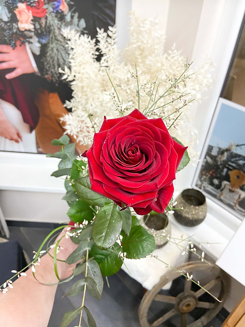 Rose mit Beiwerk