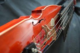 Octaveharpa | violoncello | Feltre (BL)