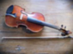 Viola | Feltre (BL)