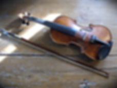 Violino | Fiddle | Feltre (BL)
