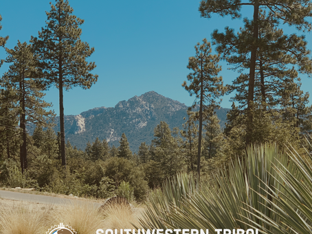 Second Southwestern Tribal Climate Change Summit a Success!