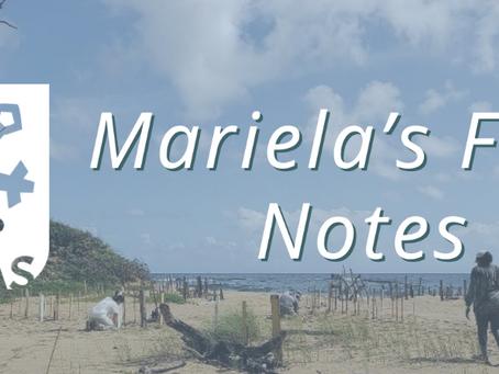 Mariela's Field Notes: Trabajos en el proceso de restauración de la Duna #1