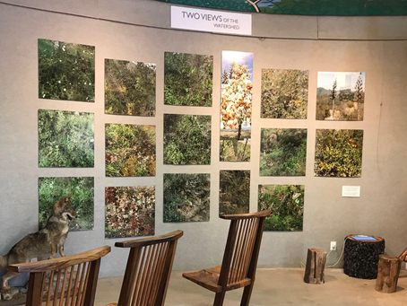 """""""Two Views of the Watershed"""" on Display at the Elfin Forest"""