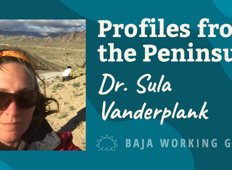 Profiles from the Peninsula: Dr. Sula Vanderplank