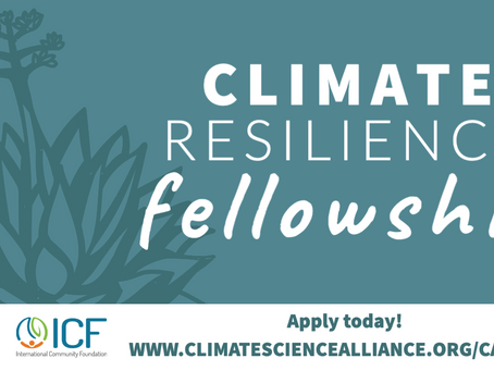We are Hiring a Climate Resilience Fellow to Focus on Baja!