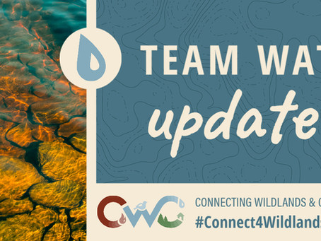 Update from CWC Project's Team Water!