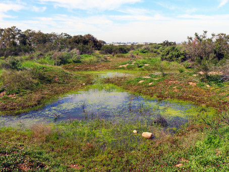 San Diego Ecosystem Assessment Utilized for City of Carlsbad Management Plan