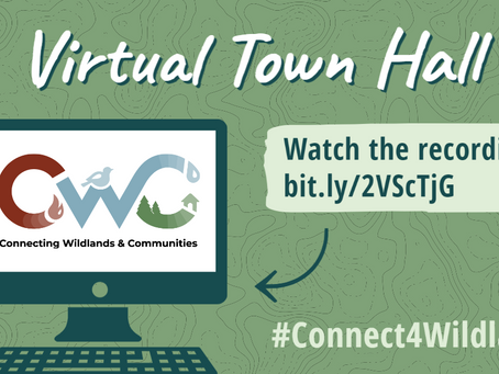 Connecting Wildlands & Communities Team Convenes Virtual Town Hall