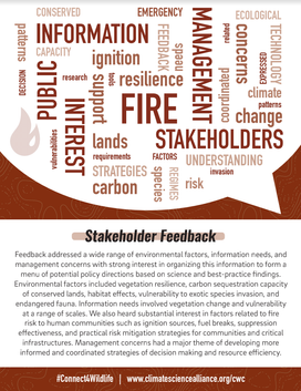 Stakeholder Feedback: Fire