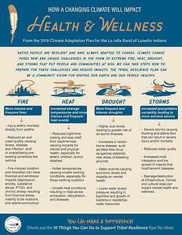Summary One-Pager: Health & Wellness