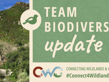 Update from CWC Project's Team Biodiversity!
