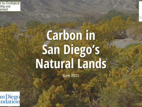 Carbon Sequestration Team Co-Leads Stakeholder Workshop