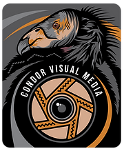 Condor Visual Media