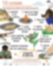 10 Things Wildlife Poster 2.4 Spanish.jp
