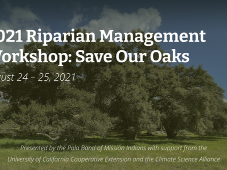 Resilient Restoration Project Featured at 2021 Riparian Management Workshop
