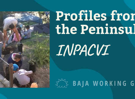 Profiles from the Peninsula: INPACVI