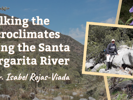Walking the Microclimates Along the Santa Margarita River