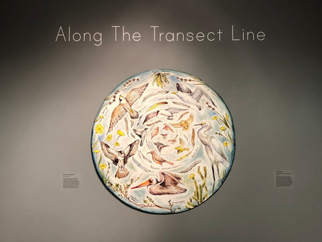 """Along the Transect Line"" now on Exhibit at the Oceanside Museum of Art"